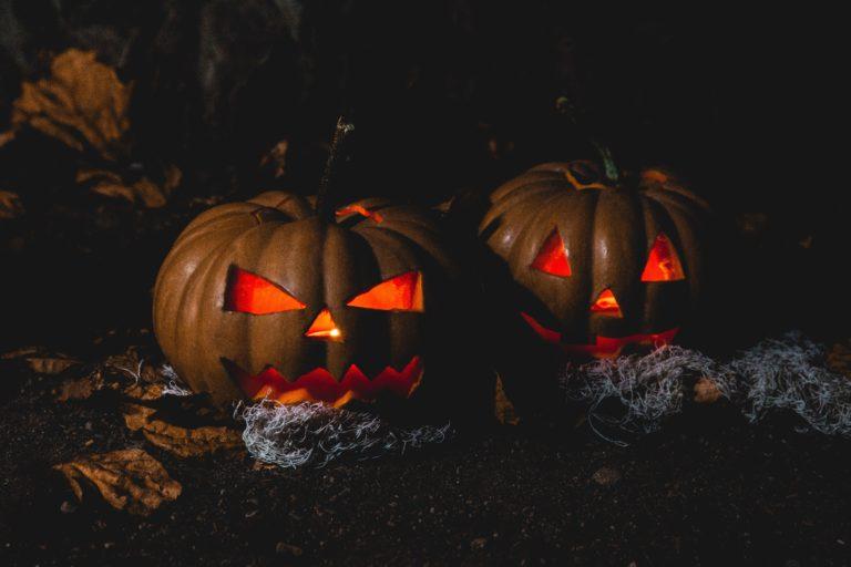 jack o lantern kürbis fratze kürbislaterne halloween kürbis